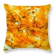 Treponema Pallidum Lm Throw Pillow by Michael Abbey