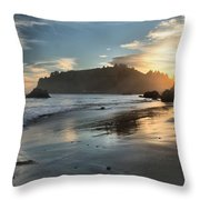 Trinidad Beach Reflections Throw Pillow by Adam Jewell