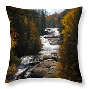 Triple Falls Throw Pillow by Penny Lisowski