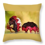 Tropical Mangosteen Throw Pillow by Kaye Menner