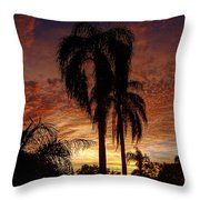 Tropical Sunset Throw Pillow by Kandy Hurley