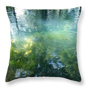 Trout Pond Throw Pillow by Mary Wolf