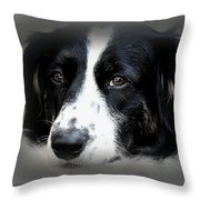 True Companion Throw Pillow by Melanie Lankford Photography