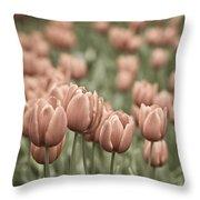 Tulip Field Throw Pillow by Frank Tschakert