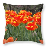 Tulips From Brooklyn Throw Pillow by John Telfer