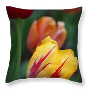 Tulips On Fire II Throw Pillow by Suzanne Gaff