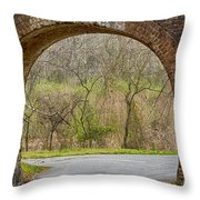 Tunnel Vision Throw Pillow by Anne Rodkin
