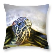 Turtle Throw Pillow by Elena Elisseeva
