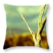 Twigs IIi Throw Pillow by Marco Oliveira