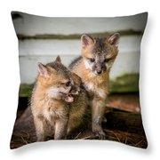 Twin Fox Kits Throw Pillow by Paul Freidlund