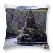 Twin Peaks Throw Pillow by Roger Wedegis