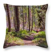 Twisp River Trail Throw Pillow by Omaste Witkowski