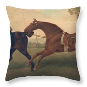 Two Hacks Throw Pillow by George Stubbs