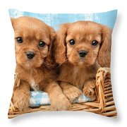 Two Puppies In Woven Basket Dp709 Throw Pillow by Greg Cuddiford