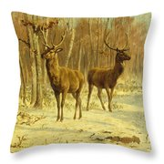 Two Stags In A Clearing In Winter Throw Pillow by Rosa Bonheur