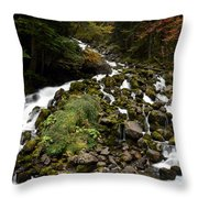 Uelhs Deth Joeu Falls Throw Pillow by RicardMN Photography