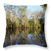 Ultimate Reflection Throw Pillow by Debra Forand