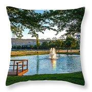 Umatilla Fountain Pond Throw Pillow by Robert Bales