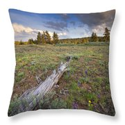 Under Stormy Skies Throw Pillow by Mike  Dawson