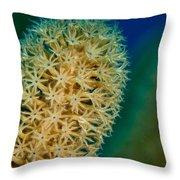 Underwater Gorgonian Throw Pillow by Jean Noren