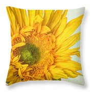 Unrivaled Throw Pillow by Heidi Smith