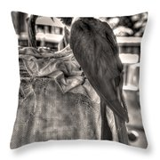 Up At The Blue Parrot Throw Pillow by William Fields