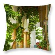 Up At The Villa Throw Pillow by Theresa Tahara