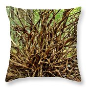 Uprooted Throw Pillow by Adam Jewell