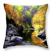 Upstream Throw Pillow by Karen Wiles
