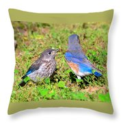 A Mothers Care Throw Pillow by David Lee Thompson