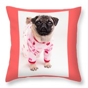 Valentine's Day - Adorable Pug Puppy In Pajamas Throw Pillow by Edward Fielding