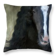 Valentino Dreams Throw Pillow by Fran J Scott