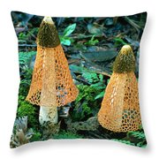 Veiled Lady Mushrooms Throw Pillow by Glen Threlfo