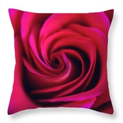 Velvet Rose Throw Pillow by Kathy Yates
