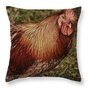 Vermont Rooster Throw Pillow by Deborah Benoit