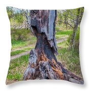 Vibrant And Burnt Out Throw Pillow by Omaste Witkowski