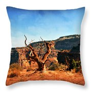 View Of The Canyon Throw Pillow by Marty Koch