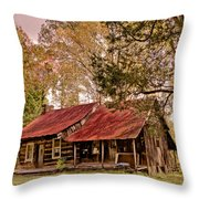 Viintage Cabin Throw Pillow by Debra and Dave Vanderlaan