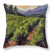 Vineyard At Dentelles Throw Pillow by Diane McClary