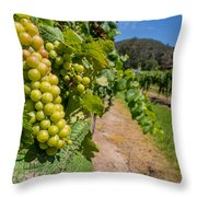 Vineyard Grapes Throw Pillow by Justin Woodhouse
