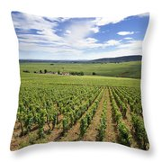 Vineyard Of Cotes De Beaune. Cote D'or. Burgundy. France. Europe Throw Pillow by Bernard Jaubert