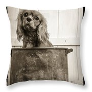 Vintage Puppy Bath Throw Pillow by Edward Fielding