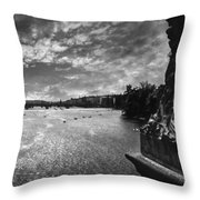 Vltava Throw Pillow by Taylan Apukovska