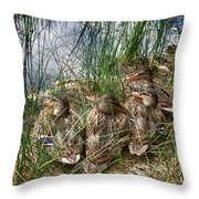 Waddle Of Ducks Throw Pillow by Trever Miller