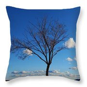Waiting For Spring Throw Pillow by Feva  Fotos