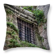 Waiting In Line For The Dome Throw Pillow by Joan Carroll