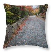 Walk Along Throw Pillow by Jon Glaser