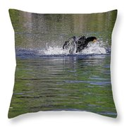 Walk On Water - The Anhinga Throw Pillow by Christine Till