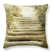 Walkway to beach Throw Pillow by Les Cunliffe
