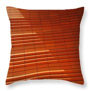 Wall In Shadow Throw Pillow by Randall Weidner